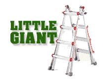 Little Giant Ladder Store