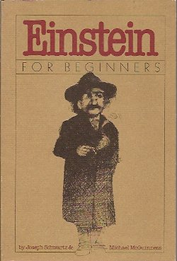 Einstein for Beginners, Schwartz, Joseph