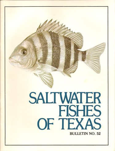 Saltwater Fishes of Texas - Bulletin No. 52