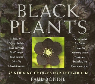 Black Plants:  75 Striking Choices for the Garden, Bonine, Paul