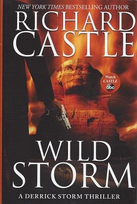 Wild Storm: A Derrick Storm Thriller, Castle, Richard