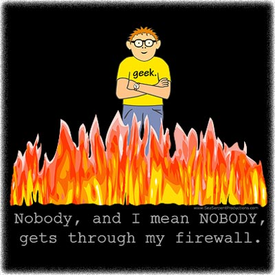 Dissertation on firewalls